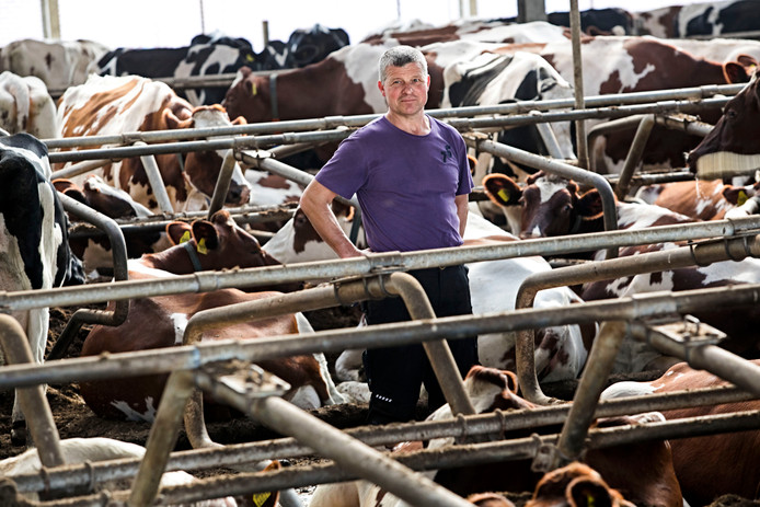 Johan van Rijthoven, melkveehouder uit Casteren