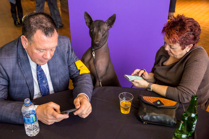Twee deelnemers aan de Westminster Kennel Club Dog Show in New York met hun hond. Foto Natan Dvir