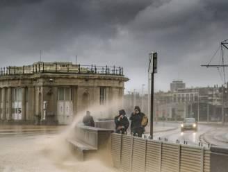 Stormachtige zaterdag: felle rukwinden tot 110 kilometer per uur aan zee