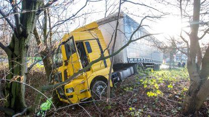 Trucker wordt vermoedelijk onwel en botst tegen boom