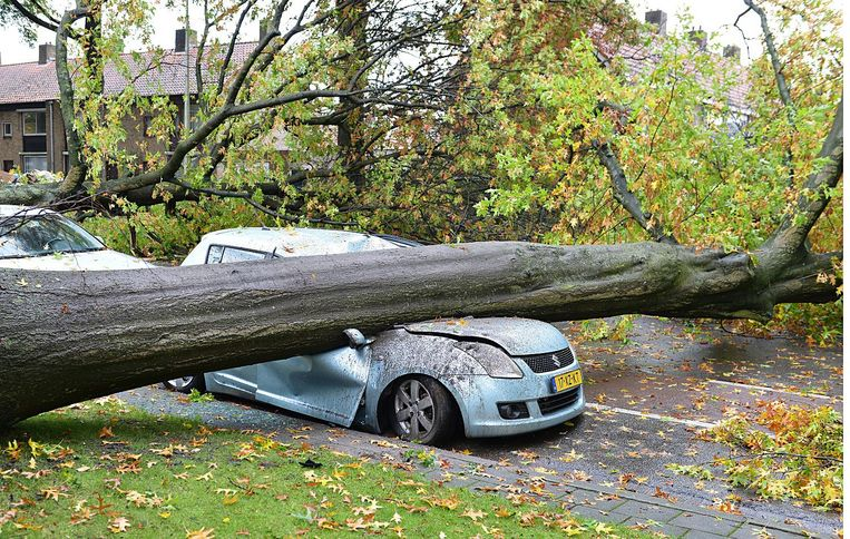 Schade na storm in Tilburg in 2014. Beeld null