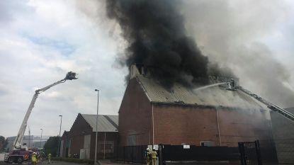 Zware brand en hevige rookpluim in bedrijf dat houtkrullen verwerkt
