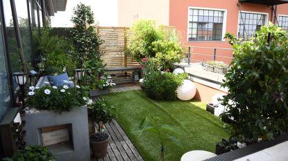 Nieuwe challenge: HLN gaat op zoek naar mooiste tuin en terras