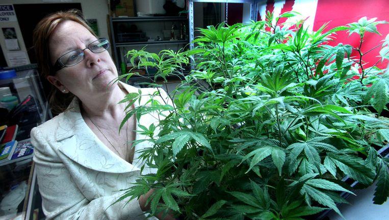 Lanette Davies, mede-eigenaar van een zaak die marihuana voor medisch gebruik verkoopt in Sacramento, Californië. Beeld ap