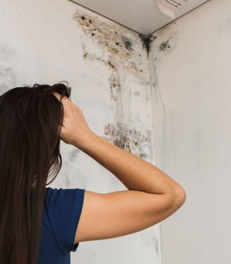 Hoe krijg ik de luchtvochtigheid in huis omlaag?