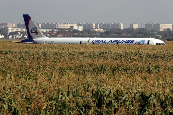 Het vliegtuig eindigde in een maisveld.