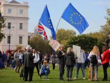 Grootste betoging in 15 jaar: bijna 700.000 Britten de straat op voor nieuw referendum brexit