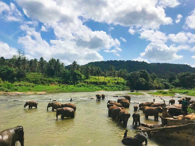 Rambukkana, Sri Lanka.
