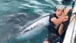 Selfie loopt bijna dodelijk af: haai wil toerist opschrokken