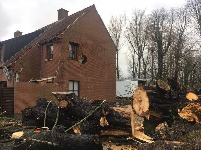 De omgewaaide boom sloeg een gat in de zijgevel van de woning in Wakken.