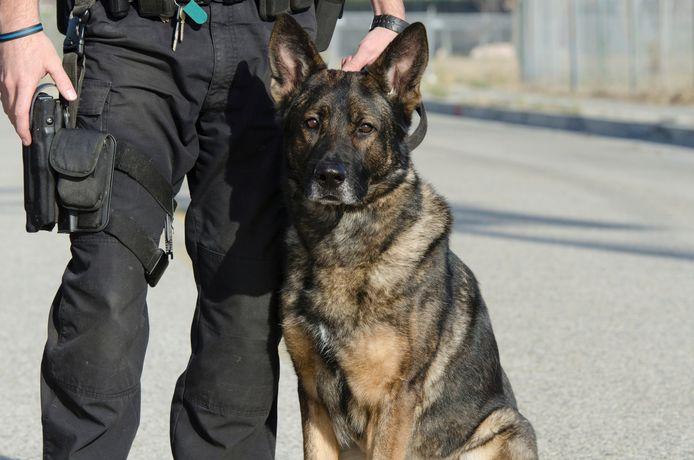 Een politiehond hielp mee bij het zoeken