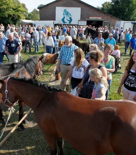 Paardentram krijgt hoofdrol in Loenen