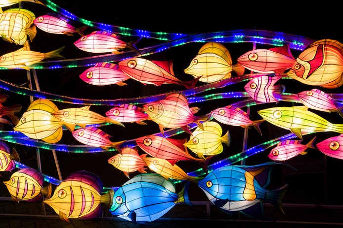 Het China Light Festival in Ouwehands Dierenpark in 2019.