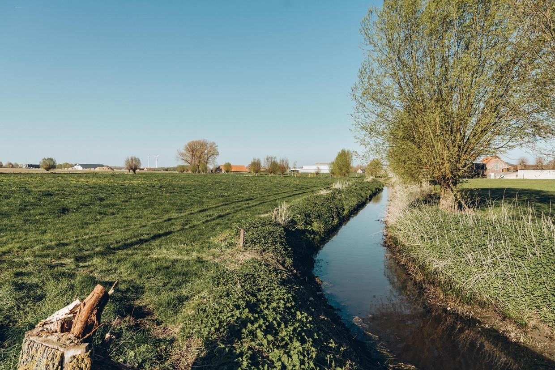 De Wulfdambeek in Ledegem bevatte volgens onderzoek 70 soorten pesticiden.