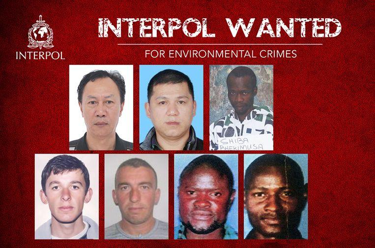 Boven: Muk Nam Wong, Guo Qin Huang en Bhekumusa Mawillis Shiba. Onder: Ergest Memo, Taulant Memo, Nicholas Mweri Jefwa en Samuel Bakari Jefwa.