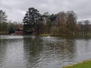 Il sera possible de nager dans l'étang du Bois de La Cambre ce week-end