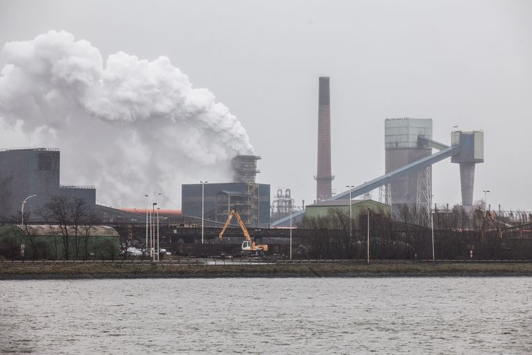 De Gentse haven moet volgens milieuschepen Tine Heyse meer inspanningen leveren voor schonere lucht