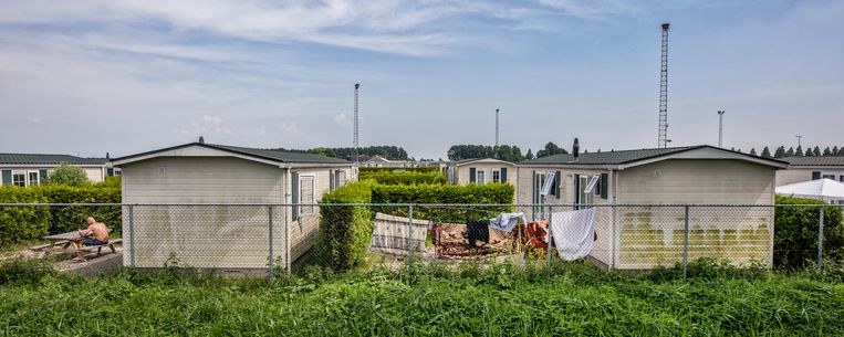 Widłaś woonde eerst op een chaletpark in Ter Aar. Beeld Raymond Rutting / de Volkskrant