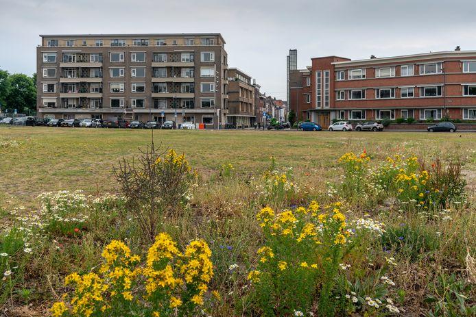 Het Wilhelminaplein is tijdens de Bossche Zomer de locatie voor een speciale 'Kemping'
