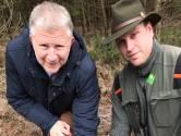 Boswachter ontroerd door beelden wolvenwelpjes op de Veluwe: 'Ik kreeg tranen in mijn ogen'
