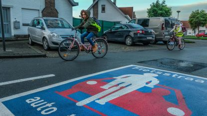 Zeven fietsstraten ingevoerd in Avelgem