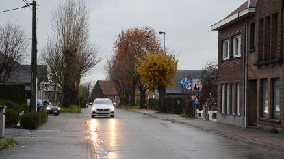 Inwoners Bosstraat-Hoogkouterbaan stemmen over verkeersmaatregelen: volledige zone 30 met 'knip' en eenrichtingsverkeer in Hoogkouterbaan