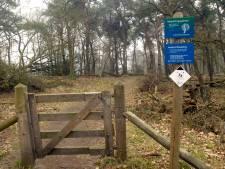 Wandelen en opruimen in natuurgebied De Borkeld bij Holten