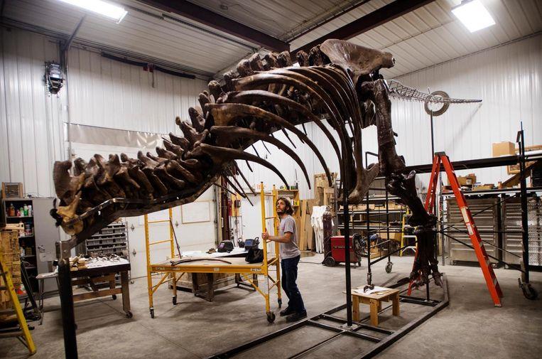 T rex Trix in een loods in South Dakota. Beeld Marten van Dijl