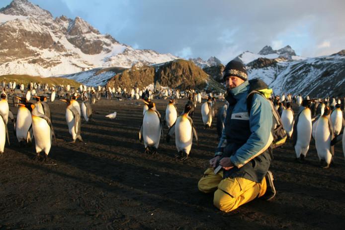Tussen de pinguïns op Zuid-Georgia.