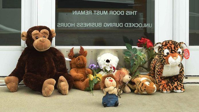 Een herdenkingsplaats voor leeuw Cecil bij de voordeur van de tandartspraktijk van Walter Palmer