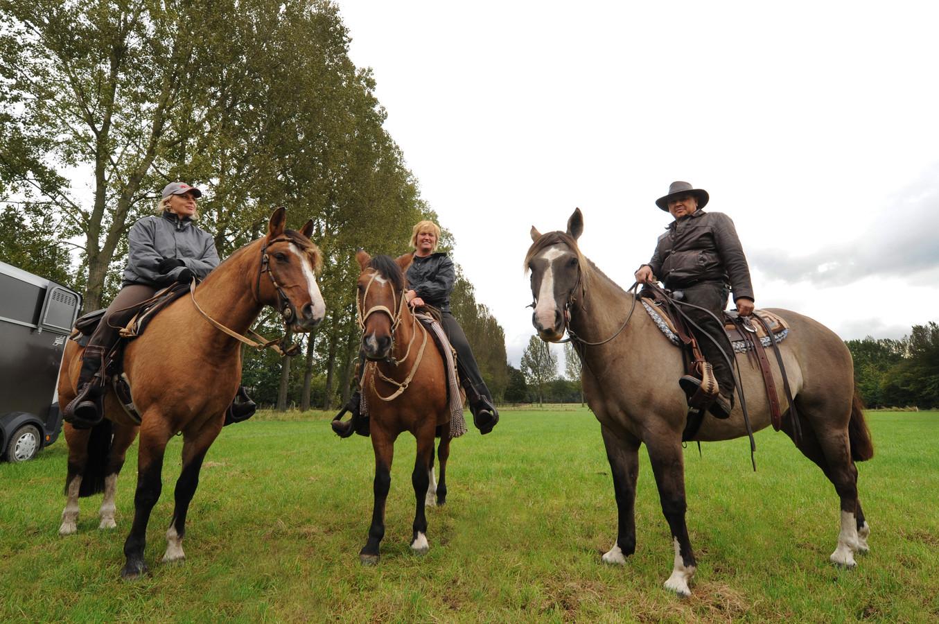Foto van de Paarden3daagse in 2011.