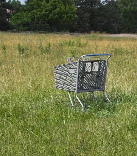 Friese supermarkt mist 50 winkelwagens: 'Sommigen zullen er vijf in hun schuur hebben staan'