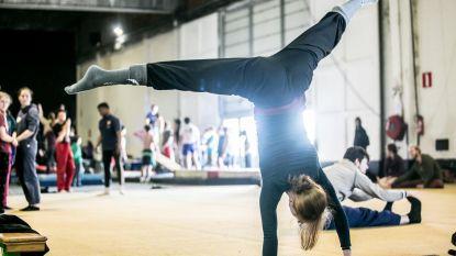 """Meerdaags circusfestival komt naar Hemiksem: """"Dit kan echte circusgemeente worden"""""""