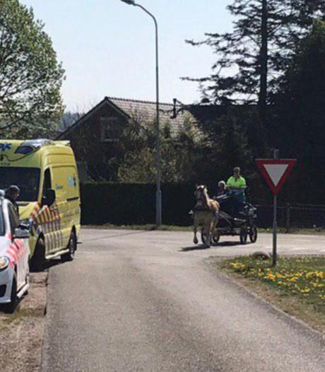 Politie vindt bij Kilder loslopend paard met gewonde koetsier
